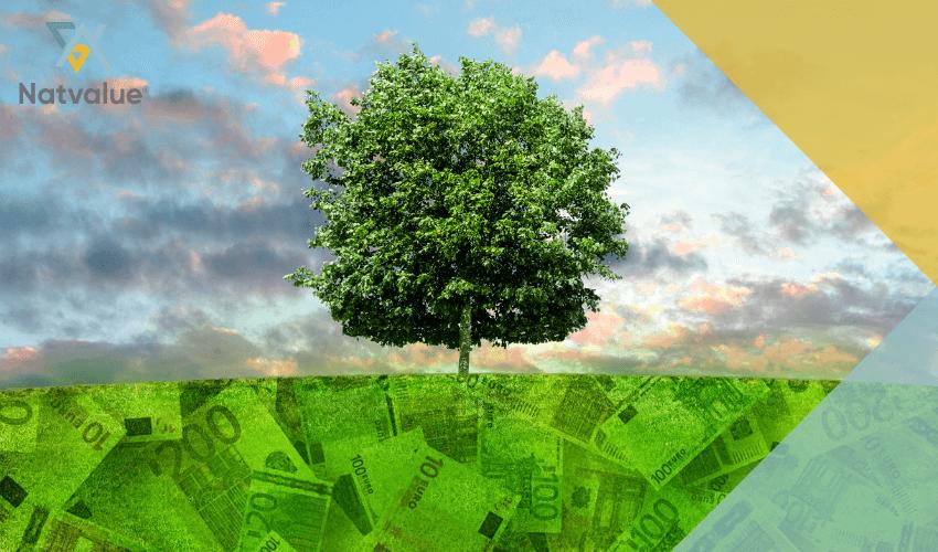 valoracion economica del capital natural